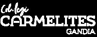 logo-name-carmelites-b